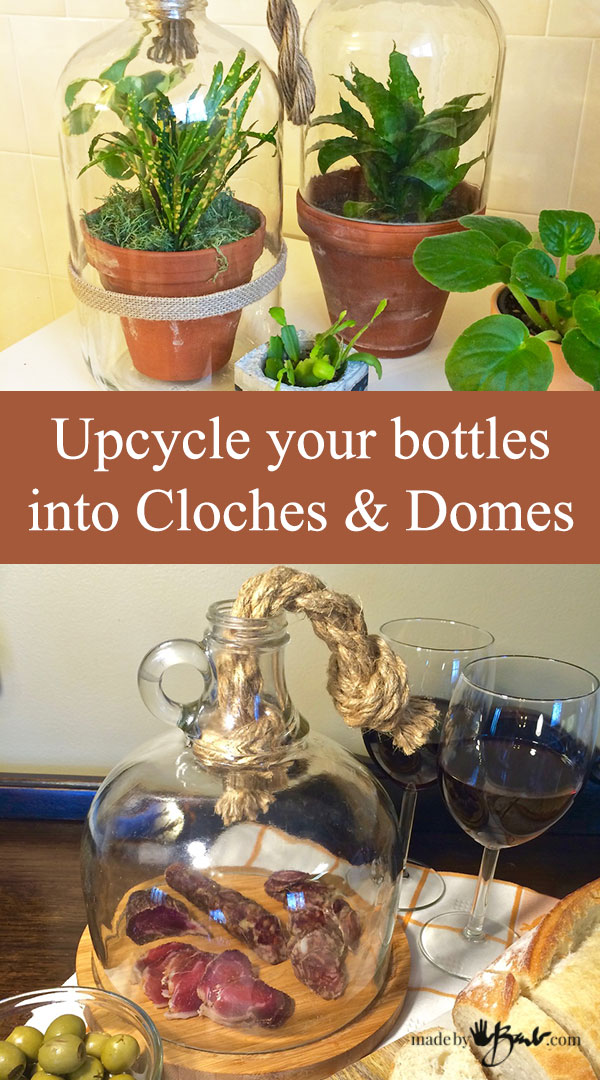 Upcycle Your Bottles Into Cloches & Domes