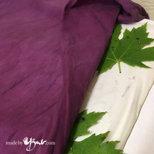 purple carrier cloth over maple leaves