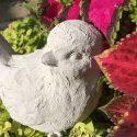 Cast Your Own Concrete Critter Part 2