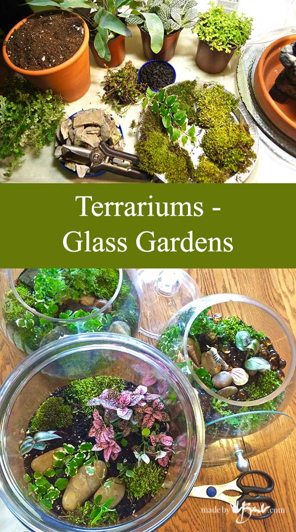Terrariums—Glass Gardens–madebybarb Feature