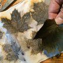 Eco Printing On Cotton