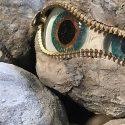 Rock Eye Peepers