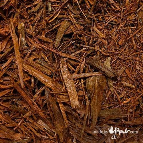 detail of fine logwood bark