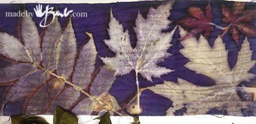 grey leaves printed in background of logwood dye
