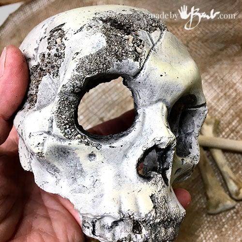textured skull close up