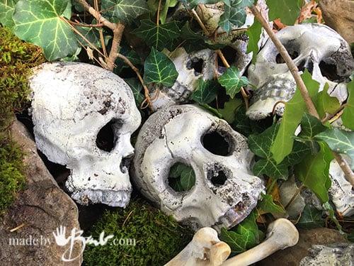 few concrete skulls and turkey bones