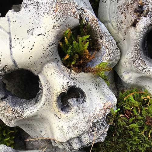 Super Real Look Concrete Skulls