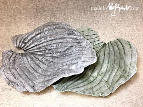 concrete hosta leaves with amazing texture
