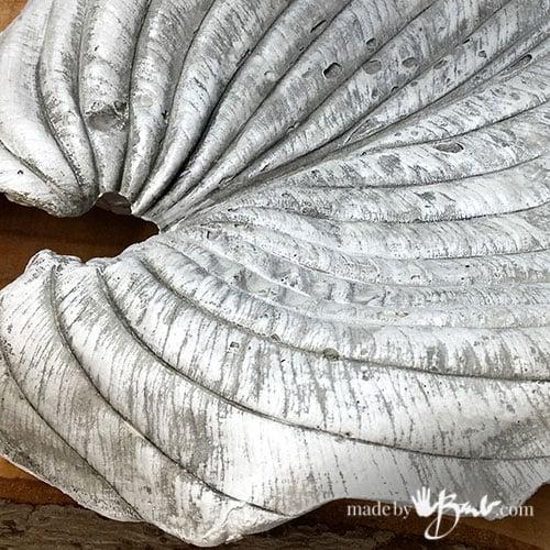 close up of concrete hosta leaf